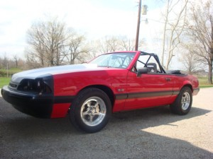 My Mustang 036