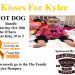 Kisses for Kylee Benefit October 16th, Owensboro Ky.