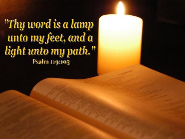 lamplight11