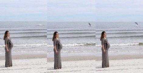 dolphin-photobomb-470x240